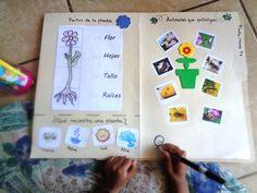 Lapbook Plantas y Flores