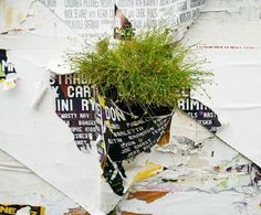 Be a rebel with a beautiful cause and explore Guerrilla Gardening ;) | 10 Most Awesome Guerrilla Gardens from Around the World | Environment on GOOD