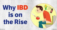 Researchers believe the rise in IBD may be linked to dietary changes, as more people are now eating primarily processed foods high in sugars and synthetic chemicals. http://articles.mercola.com/sites/articles/archive/2016/11/23/inflammatory-bowel-disease-rise.aspx