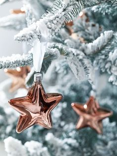 Make your Christmas tree the star of the show with our set of six lightweight copper baubles. Each three-dimensional star has been carefully made from quality glass with softly rounded edges, a high shine finish and a simple white ribbon for hanging. Team these striking copper stars with our Six Glass Baubles-Copper and hang from our Fabulous Frosted Fir Tree for a truly opulent display.