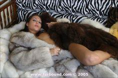 little bisexuell sweatheart in fur