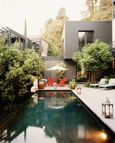 A sexy, streamlined pool area like this one may be the ticket to putting those privacy hedges to good use.