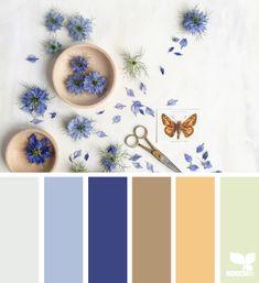 color arranged 7.9.15