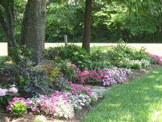 Shade garden with impatiens