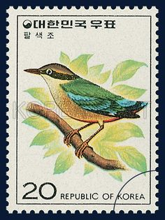Postage Stamps of Bird Series, fairy pitta, Bird, Turquoise, Green, Light brown, 1976 05 20, 조류 시리즈(제2집), 1976 05 20 1081 팔색조, postage 우표