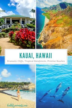 """Things to Do in Kauai Hawaii. Where to Stay in Kauai. It is the fourth largest island, known as the """"garden isle"""". Dramatic cliffs and pristine beaches.  Kauai Hawaii   Garden Isle   Travel   Travel Photography Bubbly Moments    #kauai #poipu #hawaii#beachwalk #pacificocean#cliff#waves#summer #neverstopexploring#fashion #beautifuldestinations#lifeofadventure#natgeotravel#travelgram#wanderlust #perfectday#beach #sky#ocean#travelblogger #sunnyday#aloha#sunnylife #bubblymoments"""