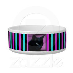 Shop Cat Photo on Turquoise, Purple and Black Stripes Bowl created by stdjura. Cute Black Cats, Pet Bowls, Pet Gifts, Portrait Photo, Purple And Black, Black Stripes, Your Pet, Turquoise, Pets