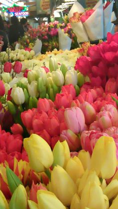 Spring and Easter / karen cox. Flowers at Pike Place Market, Seattle Flowers For Sale, My Flower, Fresh Flowers, Spring Flowers, Beautiful Flowers, Beautiful Gardens, Pike Place Market, Flower Market, Flower Shops