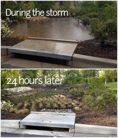 Bioretention Garden Before & After | by Department of Environmental Protection