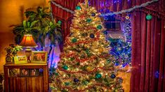 CHRISTMAS MUSIC - Best Christmas Songs Playlist - Christmas Carols by RE...