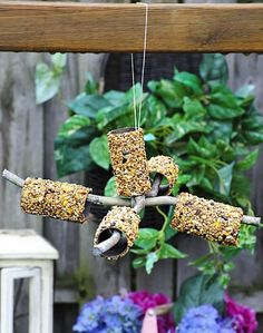 Quick 'n Easy DIY: Bird Feeder Mobile from Toilet Paper Rolls, Peanut Butter Bird Seed winter garden - scout safari Daisies; Make sure your sticks will glue together and TP rolls will fit over any Bird Feeders For Kids To Make, Bird Feeder Craft, Pinecone Bird Feeders, Homemade Bird Feeders, Bird House Kits, Toilet Paper Roll Crafts, Diy Paper, Free Paper, Bird Food