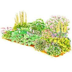 Soft-Color Shade Garden  Turn a shady, 23-by-11-foot corner of your yard into a pocket of brilliant color with this beautiful garden. It offers seasons of bloom from bleeding hearts in spring to ligularia in summer and anemone in fall.  Go to this garden plan!