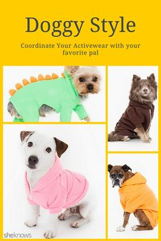 Yes, you can now coordinate your activewear with your dog's. #Pets #DogClothing