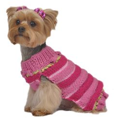 Max's Closet Dog Apparel *** Check this awesome product by going to the link at the image. (This is an affiliate link and I receive a commission for the sales) #MyPet