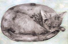 Sleeping Cat - Ingjerd Tufto Sleep, Illustrations, Cats, Animals, Gatos, Animales, Animaux, Illustration, Animal