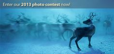 11th Annual Photo Contest | Smithsonian Magazine. Open to students 18 & older. Deadline Nov. 29 Top prize is $2,500!