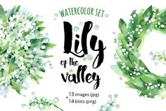 Lily of the Valley watercolor by ognivo on @creativemarket