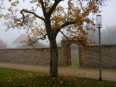 Herbst im Klostergarten