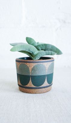 Kat and Roger Ceramic Planter Triangles – Spartan Ceramic Planters, Ceramic Vase, Ceramic Pottery, Pottery Patterns, Pottery Designs, Pottery Ideas, Pot Plante, Wheel Thrown Pottery, Plant Shelves