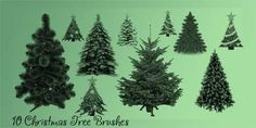 We showcase today for seodesign readers this awesome collection of 14 free photoshop christmas tree brushes which include 2 packs