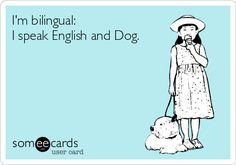 I\'m bilingual: I speak English and Dog. And Cat. And other critters, when needed.