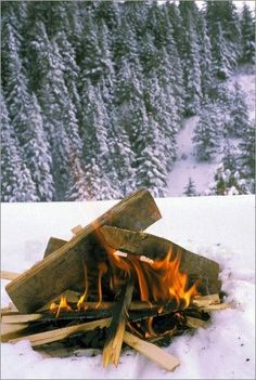 Campfire in snow | •Walking in a Winter Wonderland• | Pinterest ...