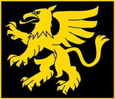 Image result for griffin flag