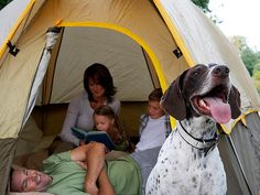 Looking for tips for family camping with the dog? Visit TLC Family to find 5 tips for family camping with the dog. Camping Glamping, Camping And Hiking, Camping Life, Camping With Kids, Family Camping, Camping Gear, Camping Hacks, Camping Stuff, Backpacking