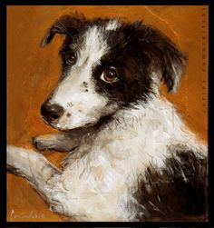 #dogsoninsta#illustrationgram #instadogs#instaart #dogart#puppyeyes #mansbestfriend  #petartist#doglover#bordercollie#dogsofinstagram…