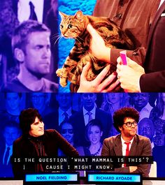 """When Noel Fielding and Richard Ayoade tried to guess the question ahead of time. 