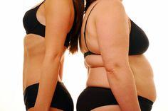 다이어트 최대의 적 복부비만이 생기는 이유와 다이어트 방법. :: wifizone.tistory.com - 건강 그리고 행복한 미래를 꿈꾸며