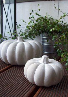 pumpkin- grey, white, green....
