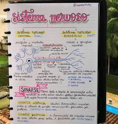 Medicine Notes, Medicine Student, Mental Map, Nursing School Notes, Science Notes, Study Organization, Bullet Journal School, School Study Tips, Medical Anatomy