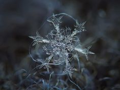 Amazing macro-photography of individual snowflakes [10 Pictures]
