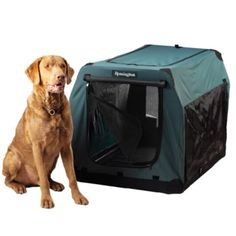 Remington Canvas Collapsible Dog Kennel, Large-Extra Large Breed - Tractor Supply Online Store