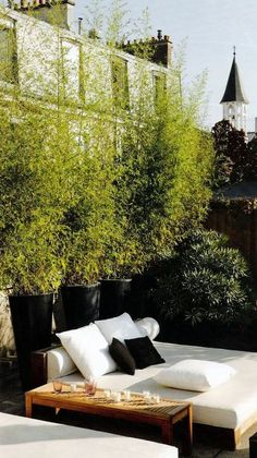 bamboo in tall black containers + white chaise lounge & narrow side table | via Outdoorsy ~ Cityhaüs Design