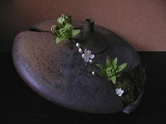 Turned - flowers of many Butterbur sprout flowers and white peach.