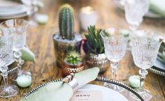 Cacti ile Dekorasyon