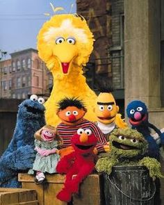 This Day in History: November 10, 1969  After five test shows and years of preparation, Sesame Street premiered on NET (National Educational Television, a precursor of PBS) on November 10, 1969. It was not until almost a decade later that The Muppet Show appeared, September 5, 1976.