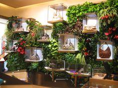 Verde Verticale Indoor per Bulgari