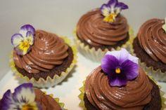 Chocolate cupcakes! Chocolate Cupcakes, Tart, Pudding, Desserts, Food, Cake, Meal, Pie, Custard Pudding