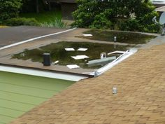 Is that a flat roof or a roof top pool?  (water ponding on roof)