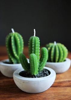 These cactus candles are too cute.