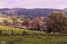 Herfst, het mooiste jaargetijde in de Ardennen