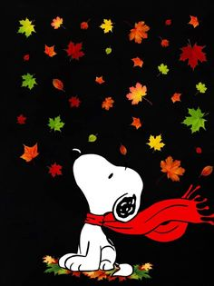 Snoopy Images, Snoopy Pictures, Kids Cartoon Characters, Cartoon Kids, Snoopy Videos, Snoopy Birthday, Snoopy Halloween, Snoopy Wallpaper, Snoopy Quotes