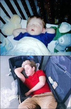 """Niall Horan sleeping may be the most adorable thing>>> actually, he's adorable whenever he does anything. He could blink and we'd all be like """"cutest thing ever!"""" which it honestly would be Fetus One Direction, One Direction Humor, One Direction Pictures, I Love One Direction, Liam Payne, Niall Horan Imagines, Naill Horan, Niall Horan Baby, Niall Horan Funny"""