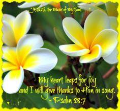 PSALM  28:7  Beautiful!!