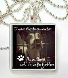 Remembrance of the millions of animals that die yearly in the shelters Glass Pendant by RileysStar on Etsy https://www.etsy.com/listing/110356668/remembrance-of-the-millions-of-animals