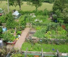 Vegans living off the land: plans for up-coming garden: permaculture, compost, & recycled materials Organic Gardening Tips, Organic Farming, Sustainable Farming, Living Off The Land, Flowering Trees, Garden Pots, Garden Ideas, Garden Planning, Amazing Gardens