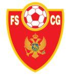 Team: Montenegro National Team Venue: Wembley Stadium